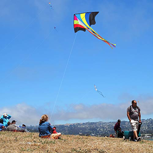Mint's Colorful Life Delta Kite for Kids
