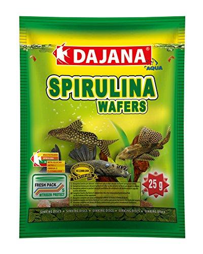 Dajana Spiruline Wafers poissons, poissons, algues, aliments coulant 80 ml