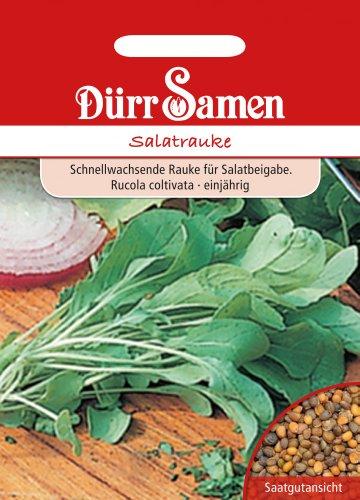 Dürr-Samen Salatrauke Rucola