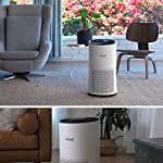 LEVOIT Air Purifier for Home Large Room with H13 True HEPA Filter, Air Cleaner for Allergies and Pets, Smokers, Mold… 14 Professional Air Care: Breathe in air that's free of 99. 97% of 0. 3 micron airborne particles such as dust, and pollen The activated carbon filter absorbs cooking odors, household odors, smoke, and volatile organic compounds (VOCs) Ideal for Allergies and Pet Owners: True HEPA Filter reduces pet odors, and traps pet fur and other contaminants It also helps relieve allergies by capturing airborne contaminants such as dust, pet dander, pollen, and mold. Wide Coverage: Enjoy fresh air in only 30 minutes in rooms as large as 1076ft², and 15 minutes in rooms as large as 538 ft². Maximum benefits 538 ft².