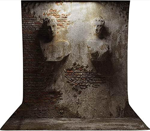 Fondo para fotografía de 1,5 x 2,1 m, diseño de pared vieja, tela de forro polar de microfibra, con bolsillo para barra (solo telón de fondo) para fotografía, vídeo y televisión