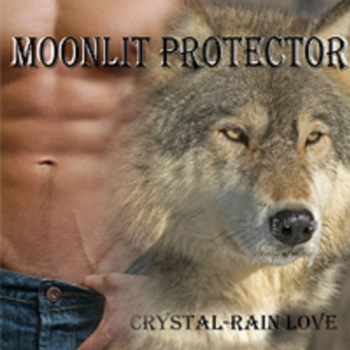 Moonlit Protector audiobook cover art