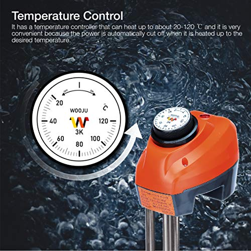 Wooju Immersion Heater 1