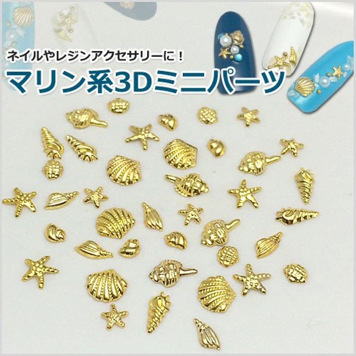 プールビートエアコンマリン系3Dミニメタルパーツ8種セット/合計40個入り「ゴールド」-シェル&ヒトデ-(ネイル?レジンアクセサリー?ネイルパーツ) [並行輸入品]