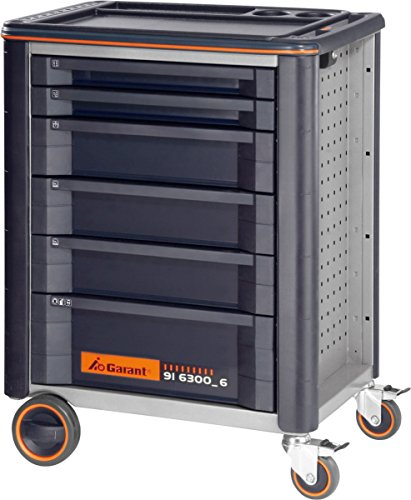Werkstattwagen ToolCar 6
