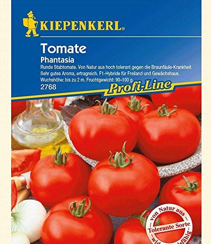 Tomaten 'Phantasia' F1,1 Portion