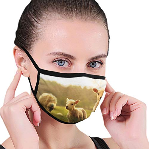 Funny Mouth Cover Dustproof Washable Reusable Spring Lambs Protective Safety Warm Windproof for Women Men