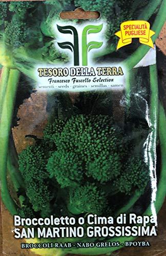 Semi - Broccoletto o Cima di Rapa San Martino Grossissima (Specialità Pugliese)