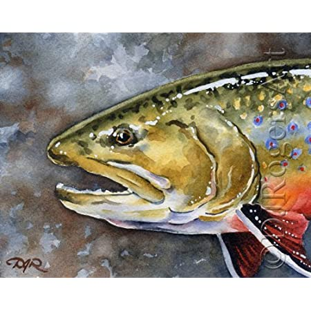 fishing dry fly fish art, watercolor Old Rainbow Trout Print fly fishing