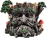 Maceta para plantas con forma escultórica de árbol Ent con...