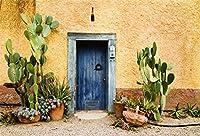 GooEoo 10×8フィート西部暑い気候国背景砂漠サボテンオールドブルードアと風化ウォールハウス戸口旅行写真の背景壁紙子供男性男の子肖像画写真スタジオ小道具