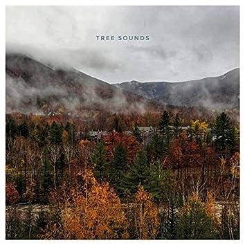 Tree Sounds