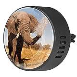 2pcs Difusor de aromaterapia Difusor de aceite esencial para automóvil Vent Clabio elefante rociar agua su trompa
