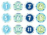 Pearhead First Year Baby Monthly Milestone Stickers, Baby Photo Props, Boy