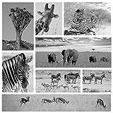 Fototapete selbstklebend Afrika Collage II - schwarz weiß