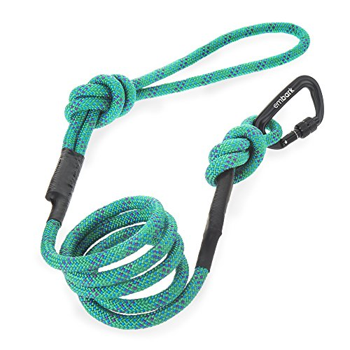 Embark Pets Sierra Leash/Mountain Climbing Rope Leash with Carabiner (Turquoise)