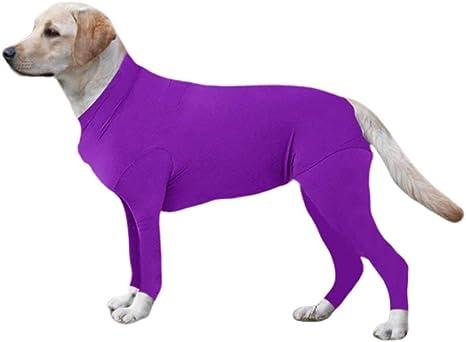 The Dog Did It Bodysuit s