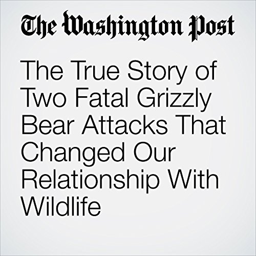 The True Story of Two Fatal Grizzly Bear Attacks That Changed Our Relationship With Wildlife copertina