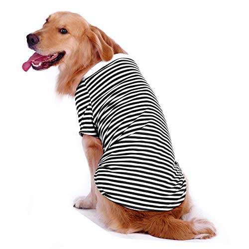 Top 10 striped dog shirt for 2020