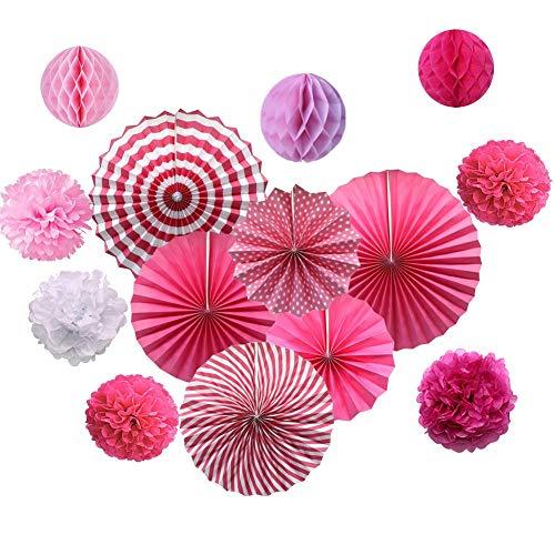 Dusenly Juego de 14 abanicos de papel para colgar, pompones de papel de seda y bolas de panal de abeja, decoración para cumpleaños, baby shower, boda, accesorios de graduación (rosa)