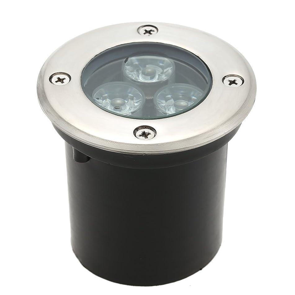 文言伝導不安Tomshine 5W AC/DC 12V 埋め込み式LED スポットライト 550LMハイパワー 強化ガラス IP67防水対応  ガーデンライト 玄関先 屋外照明 遊歩道 (3W, 2800-3500K)