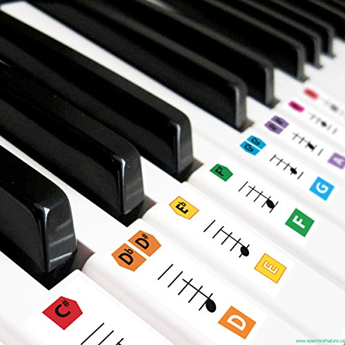 Best Reusable Large Color Piano Key Note Keyboard Stickers for Adults & Children's, FREE E-BOOK, Great for Beginners Sheet Music Book, Teacher Recommended to Learn to Play Faster