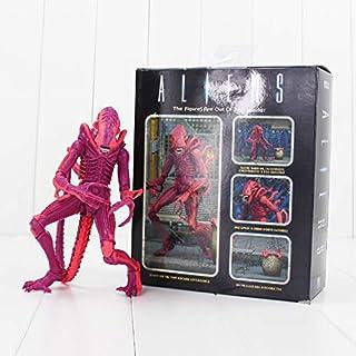 Pi² NECA Xenomorph Warrior Alien VS Predator Action Figure Toy(22cm, Multicolor)
