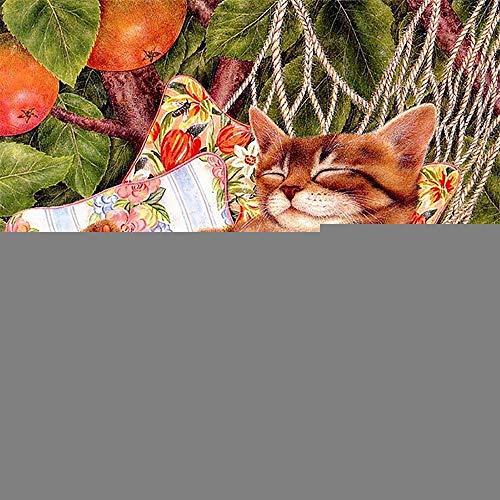 5D Diamant schilderij DIY kit kruissteek borduurwerk kunst craft kat in een hangmat diamond painting canvas ingevoegd boren vol kristal strass schilderij nummer huis muur decoratie 60×60cm Ronde draad.