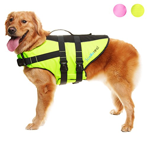 SCENEREAL Fluro Dog Life Jacket