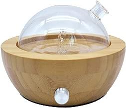 Le bambou et le verre nébulisant le diffuseur pur d'arôme d'huile essentielle avec des couleurs ont changé la lumière, aucune chaleur, aucune eau, aucun plastique