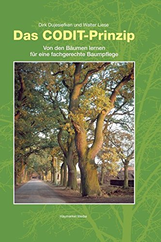 Das CODIT-Prinzip: Von den Bäumen lernen für eine fachgerechte Baumpflege