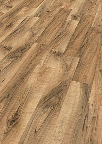 Egger Home Laminatboden EHL075 Perganti Nussbaum braun (8mm, 1,995m²) | authentische Holzoptik | | Einfache Verlegung durch CLIC It System | Wasserresistent & feuchtraumgeeignet, Dunkelbraun