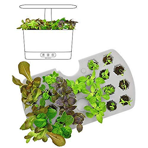 AeroGarden 800297-0200 (2018) Seed Starting System for Harvest Models, Black