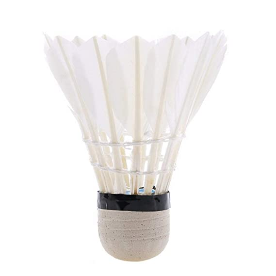 Mix Badminton Shuttle Cock (Pack of 10 GF)
