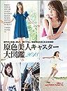 原色美人キャスター大図鑑2018 cent.FORCE Perfect File【デジタル原色美女図鑑】