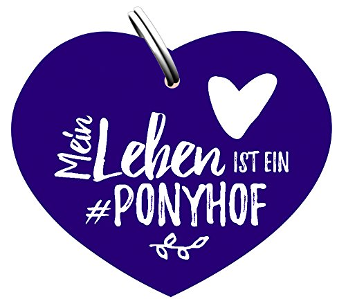 PFIFF Glücksbringer 'Ponyhof' Pferdemarke für Halfter Trense Vorderzeug Horse Tag, Pfi17_Gr.:0