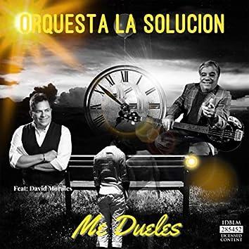 Me Dueles (feat. David Morales)