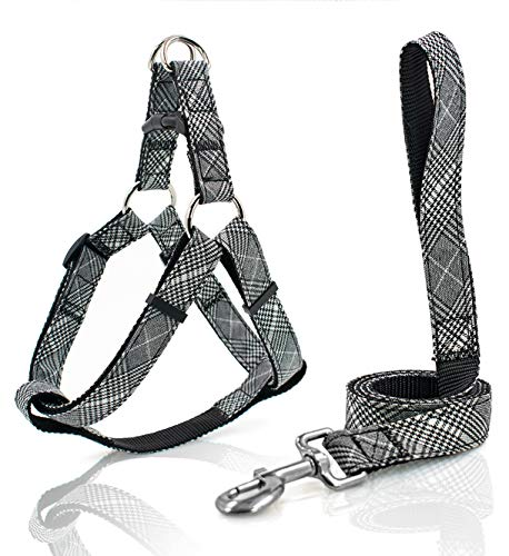 KLCW Dog Harness and Leash Set Back-Clip Dog Harness No Pulling No Choking Step-in Dog Harness, for Small and Medium Size Dogs, Good for Daily Walking and Training