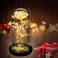 CENOVE Christmas Rose Gift with LED String Light