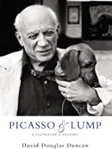 Best picasso and lump Reviews