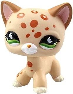Meetsunshine LPS Figure Toy,Rare Littlest Pet Shop Short Hair Cat Cream Tan Brown