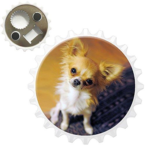 mexicain Chihuahua Taco Bell Chien Décapsuleur Aimant de réfrigérateur, Furry Puppy Eye Dog Looking Up, Bottle Opener