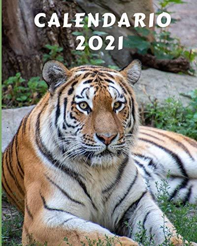 Calendario 2021: Lunedì-Domenica Mensile 2021 Calendario con immagini di bellissimi...