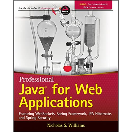 Professional Java for Web Applications: Nicholas S  Williams