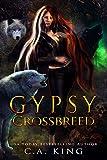 Gypsy Crossbreed