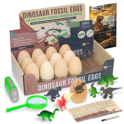 Ivy Step Dinosaur Fossil Dig Kit. 12 Life Like Dinosaur Eggs for Excavation, including Chisel Tools, Dinosaur Play Cards, Explorer Flashlight & Magnify Glass for a Complete Fossil Digging Kit for Kids