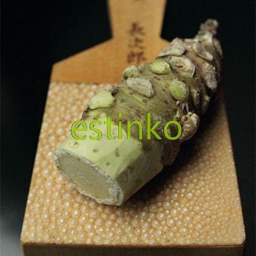 Wasabi Samen 100pcs / bag japanischen Meerrettich Samen Gemüse Wasabia Japonica-Hausgarten Bonsaipflanzen DIY