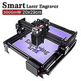 CNC Maschine Laser Graviermaschine mit 20X29CM Arbeitsbereich Super einfach zu installieren und zu bedienen für Anfänger zum Schnitzen und Schneiden von Holzplastik (3W)