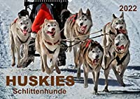 Huskies - Schlittenhunde (Wandkalender 2022 DIN A2 quer): Huskies - freundlich und aufmerksam, mit einem unglaublichen Orientierungssinn. (Monatskalender, 14 Seiten )