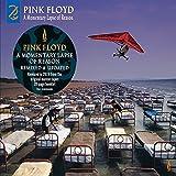 Pink Floyd: A Momentary Lapse of Reason (2019 Remix) [Vinyl LP] (Vinyl)